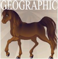 Фантастические лошади