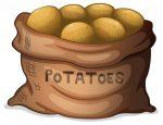 Картофель рисунки – ᐈ Шаблон картошка – векторные изображения, рисунок картофель > скачать на Depositphotos®