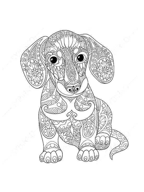 Антистресс раскраска собака – Раскраски Антистресс ...