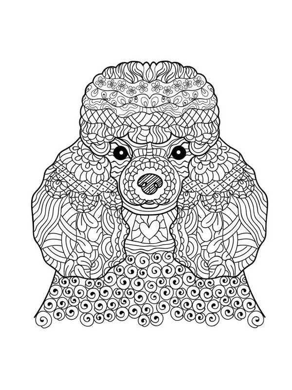 антистресс раскраска собака раскраски антистресс