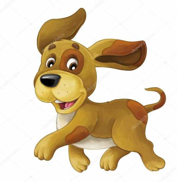 Бежит собака рисунок – Песик бежит с высунутым языком ...