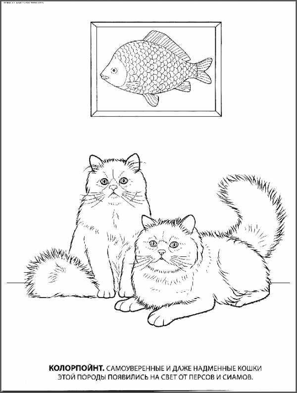 Книги по рисованию манги скачать бесплатно