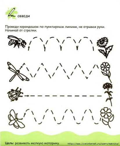 kak-narisovat-komnatnoe-rastenie-poetapno-detyam_108.jpg