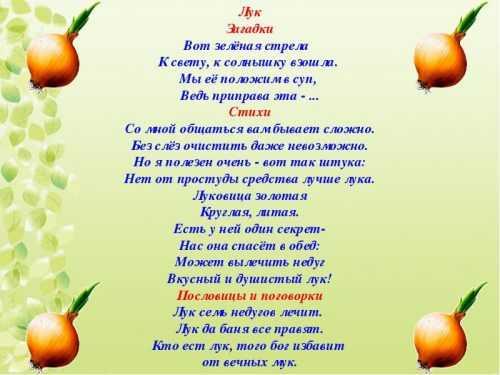 kak-narisovat-komnatnoe-rastenie-poetapno-detyam_87.jpg