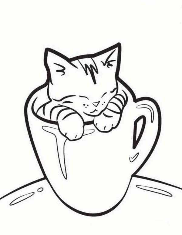 Рисунки кошек для срисовки картинки