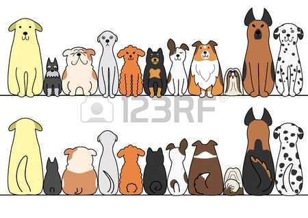 Картинки собака для детей – Картинки для детей - Собака ...
