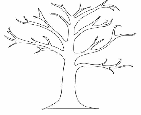 Красивый ствол дерева без листьев рисунок – Раскраска ...