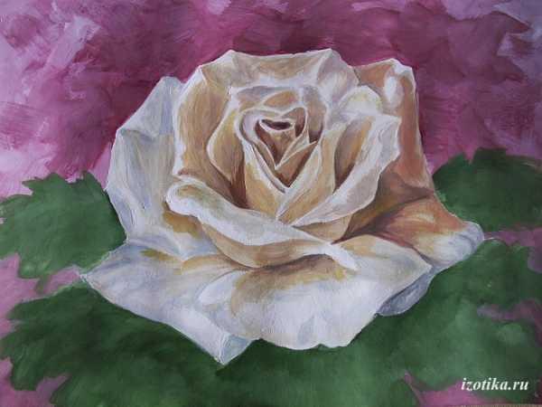 Рисуем гуашью цветы поэтапно для начинающих Одуванчики