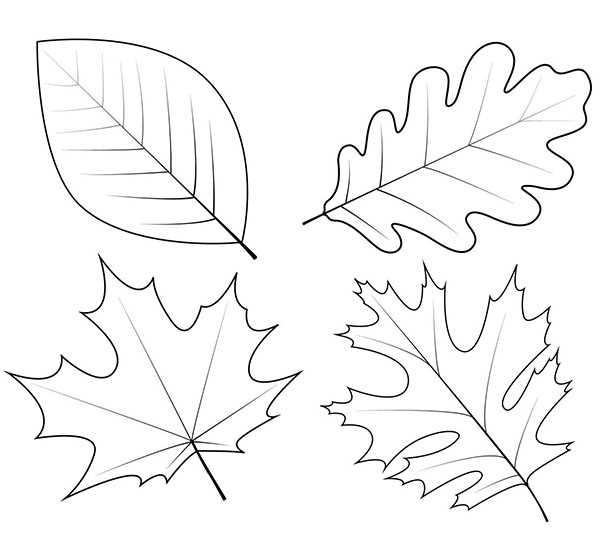 Рисунок карандашом осенний пейзаж – Как нарисовать осень ...