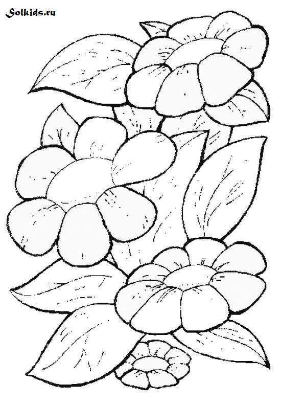 Шаблон цветика семицветика для раскрашивания – Раскраска ...